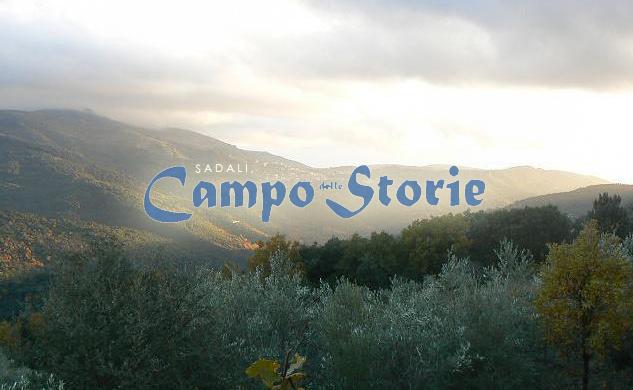 foto introduttiva pagina idea